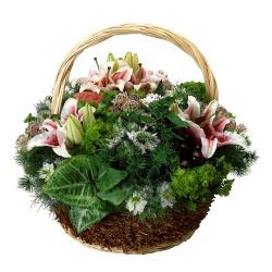 corbeille avec fleurs de deuil