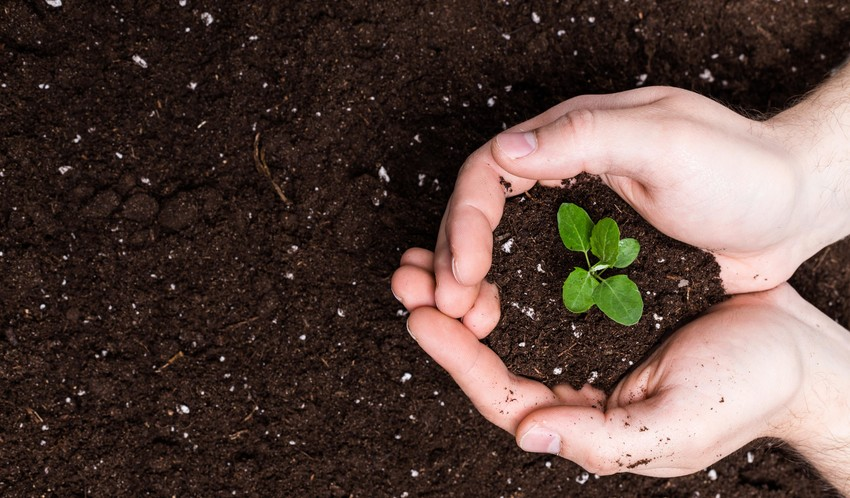 Le compost humain: un nouveau mode de sépulture autorisé aux Etats-Unis